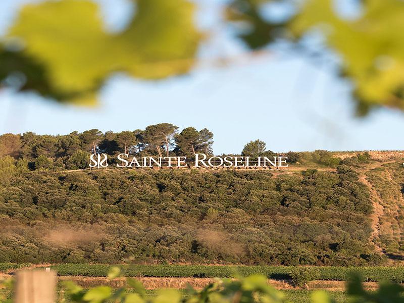 https://www.winelist.nl/media/cache/16x9_thumb/media/image/brand-banner/Banner_estate_5.jpg