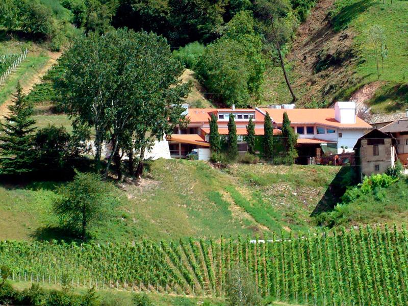https://www.winelist.nl/media/cache/16x9_thumb/media/image/brand-banner/FranzHaas_estate.jpg
