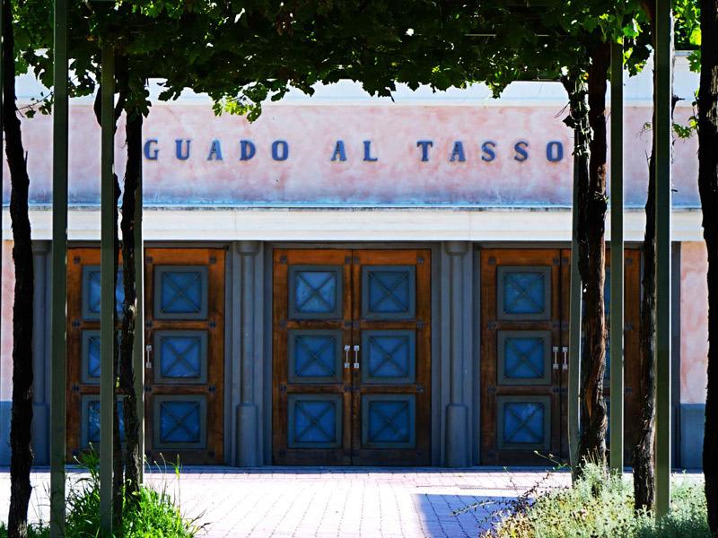 https://www.winelist.nl/media/cache/16x9_thumb/media/image/brand-banner/GuadoalTasso_estate.jpg