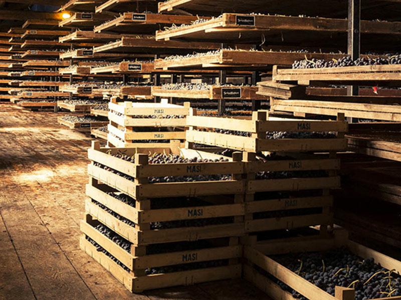 https://www.winelist.nl/media/cache/16x9_thumb/media/image/brand-banner/Masi_Estate_Banner_groot_2.jpg
