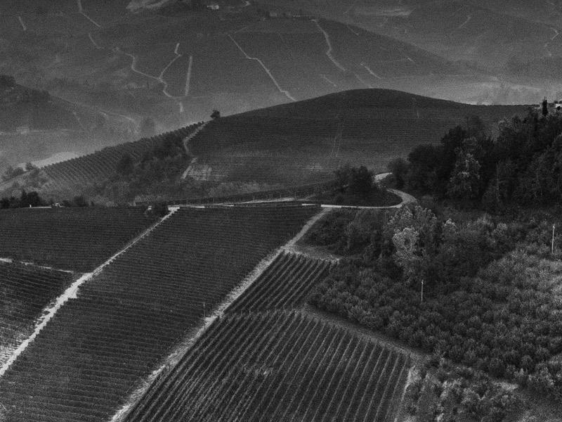 https://www.winelist.nl/media/cache/16x9_thumb/media/image/brand-banner/Prunotto_gebergte.jpg