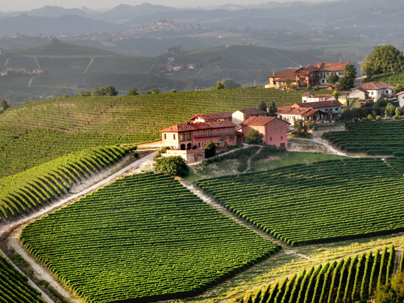 https://www.winelist.nl/media/cache/16x9_thumb/media/image/brand-banner/Prunotto_winery.jpg