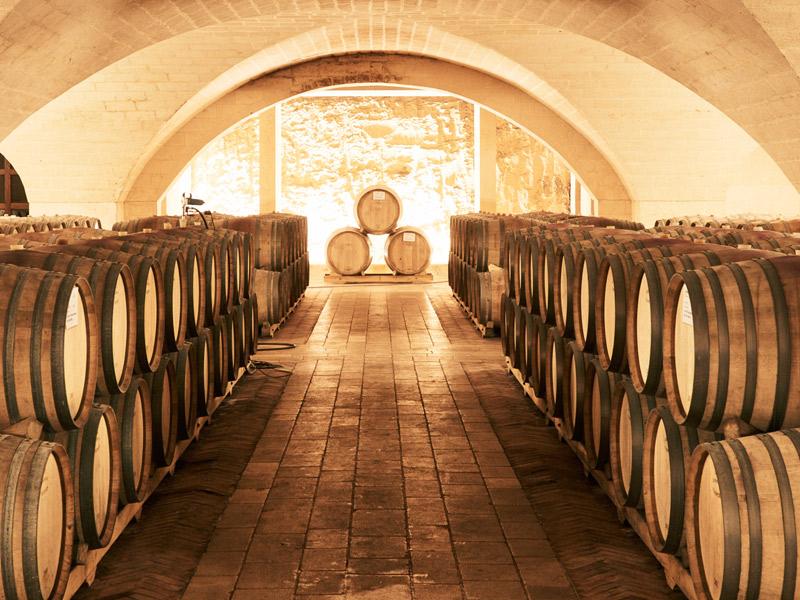 https://www.winelist.nl/media/cache/16x9_thumb/media/image/brand-banner/Tormaresca_wijnkelder.jpg