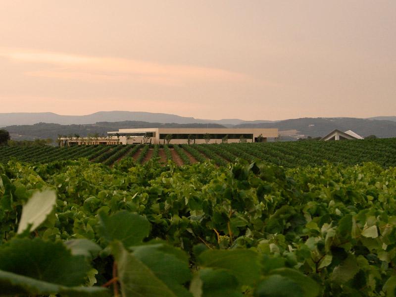 https://www.winelist.nl/media/cache/16x9_thumb/media/image/brand-banner/Vilarnau_wijnestate.jpg