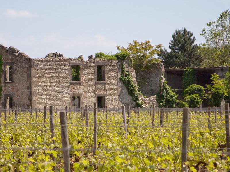 https://www.winelist.nl/media/cache/16x9_thumb/media/image/brand-banner/banner-1920-600-1.jpg