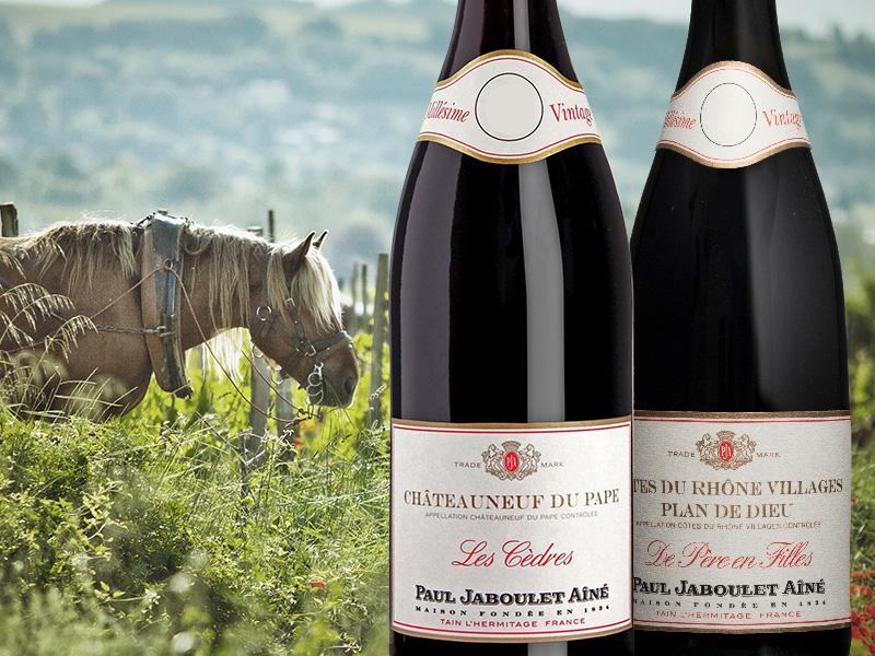 https://www.winelist.nl/media/cache/16x9_thumb/media/image/brand-cta/65-Magistrale-Chateauneuf-du-Pape.jpg