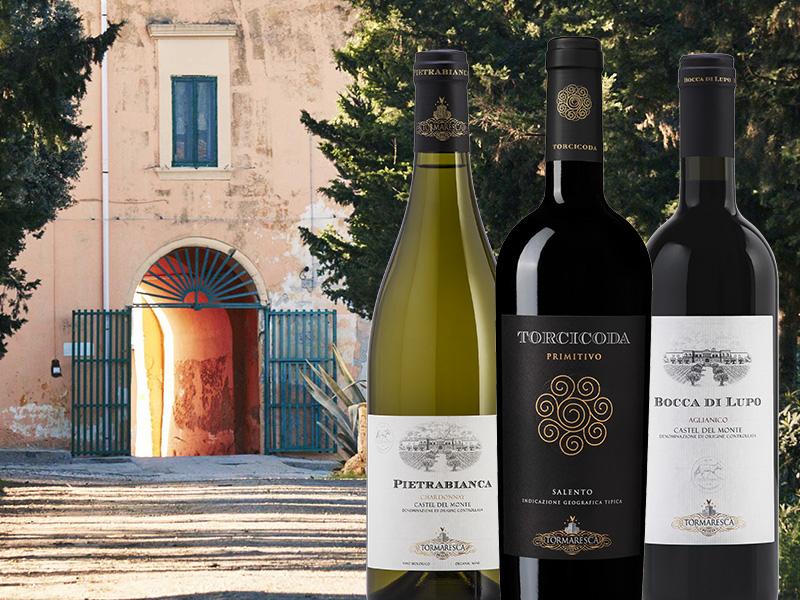 https://www.winelist.nl/media/cache/16x9_thumb/media/image/brand-cta/68-Tormaresca-het-allerbeste.jpg