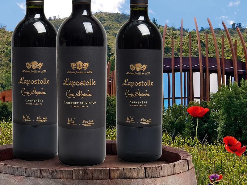 https://www.winelist.nl/media/cache/16x9_thumb/media/image/brand-cta/75-Wereldklasse-wijnen-van-Lapostolle.jpg