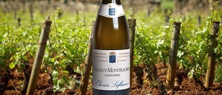 18-Montrachet