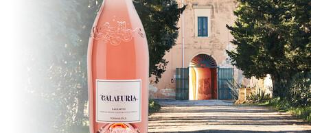 34-Tormaresca-Calafuria-Italies-beste-rose
