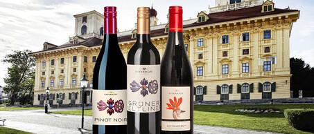 39-Esterhazy-Adelijk-goede-wijnen