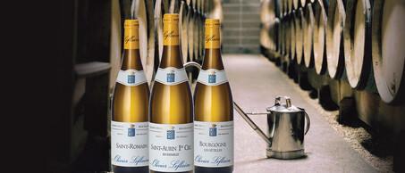 58-Olivier-Leflaives-verborgen-Bourgogne-schatten