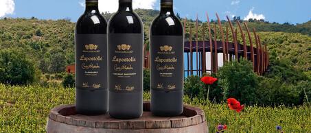 75-Wereldklasse-wijnen-van-Lapostolle