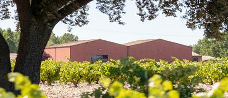 Dominio Fournier wijnhuis
