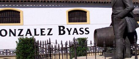 Gonzalez Byass Banner groot 5