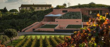 Lemortelle wijnhuis