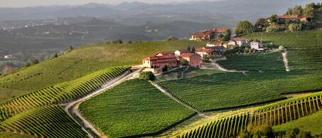 Prunotto winery
