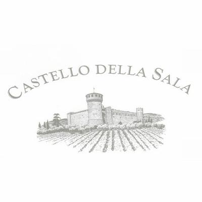 Logo Castello Della Sala