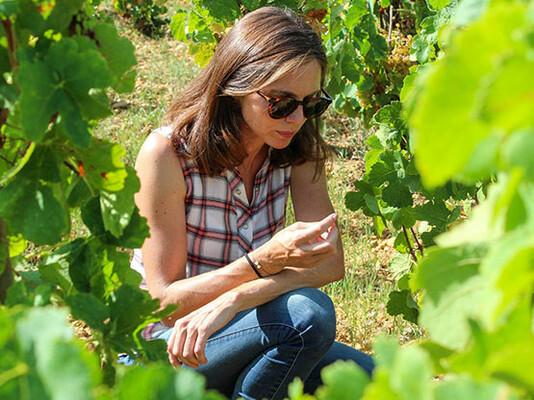 Paul_Jaboulet_winemaker.jpg