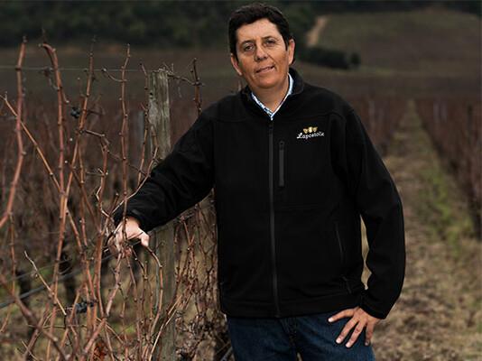 Winemaker Lapostolle